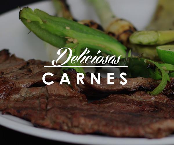 deliciosas-carnes